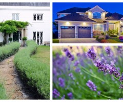 How-to-improve-your-homes-curb-appeal