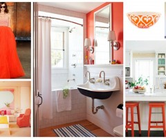 Tangerine-Tango-the-colour-of-2012-home-decor-low-res